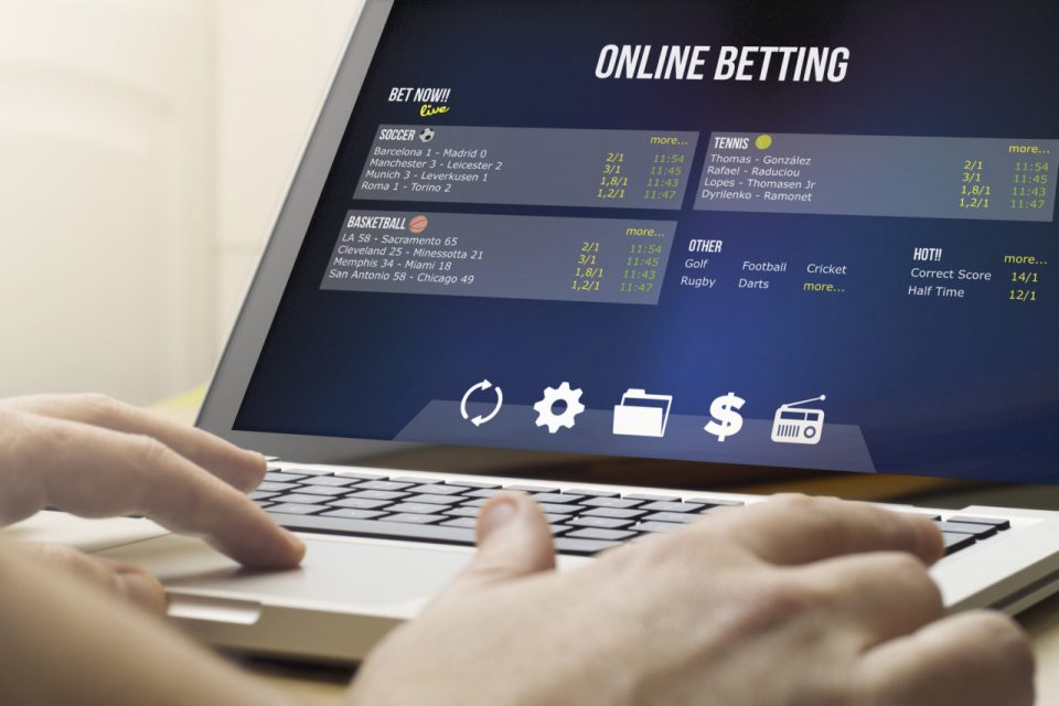 sports betting gamblers